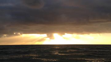 Chelsea Beach 25 Jan 2014